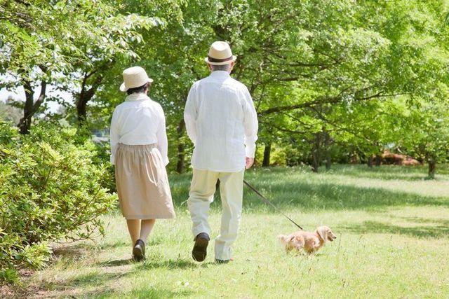 40代、50代はもちろん、60代でも婚活は始められる!