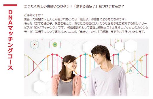 ノッツェ DNAマッチングコース