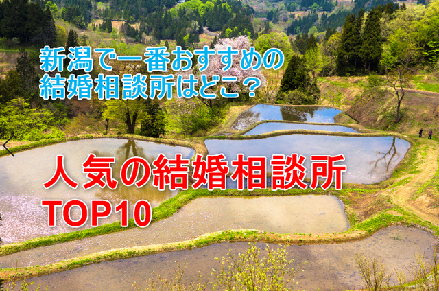 婚活恋活アプリ 新潟でおすすめの結婚相談所人気ランキングTOP10