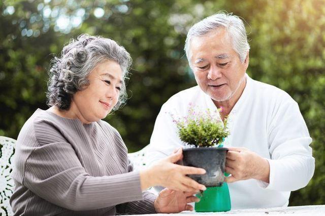 再婚バツイチ 幸せな熟年再婚をするために出来ること5選